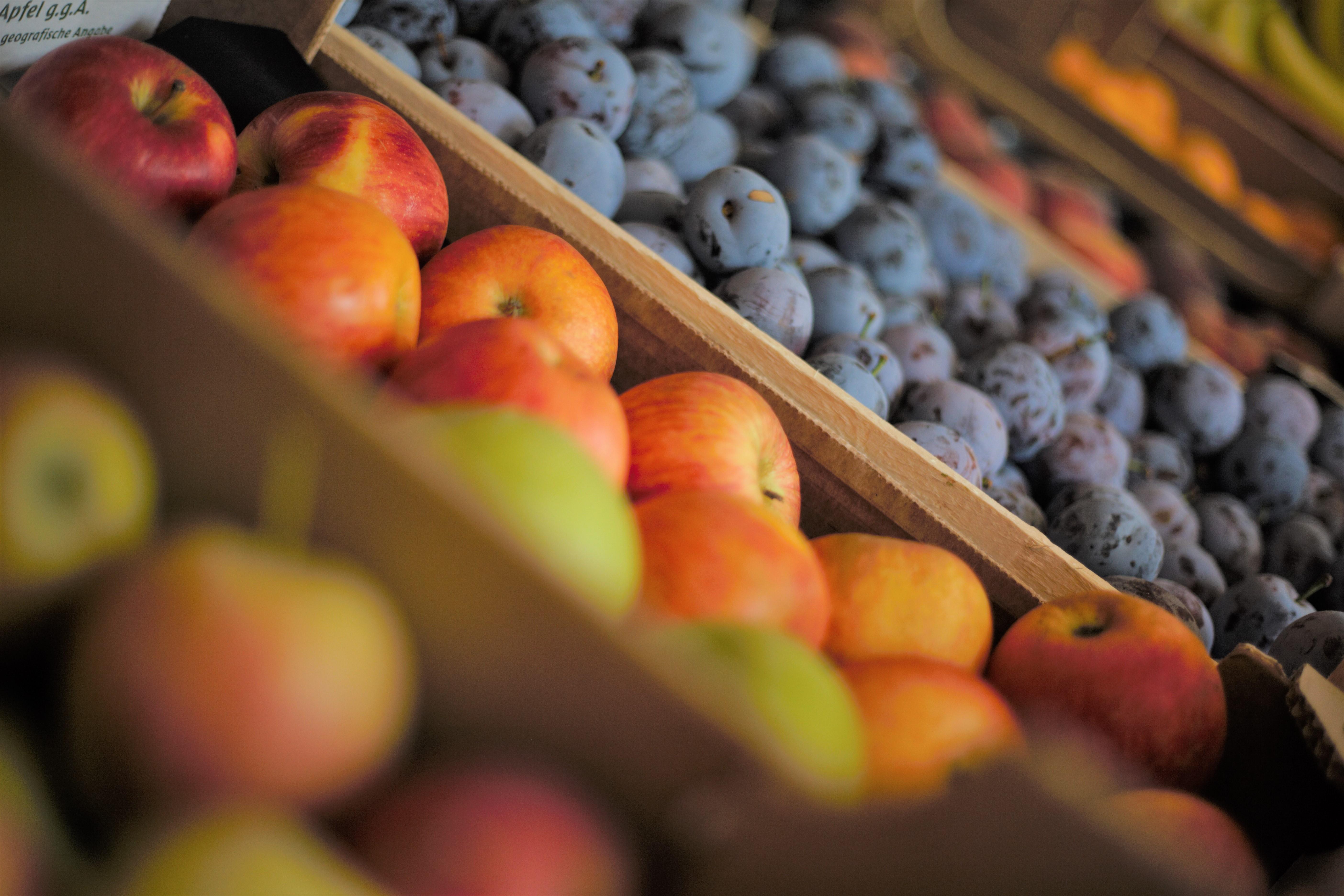 Äpfel und Zwetschgen aus heimischem Anbau