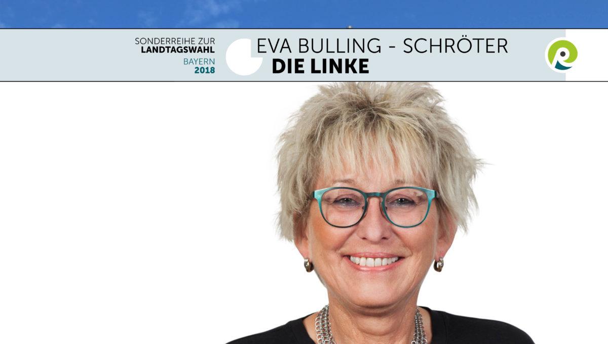 Landtagswahl-Linke-c-regiothek