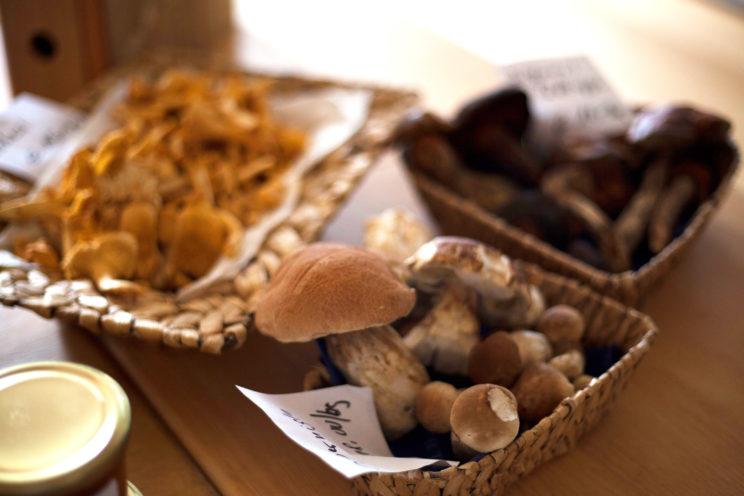 Pilze als geeignetes Gemüse zum Dörren