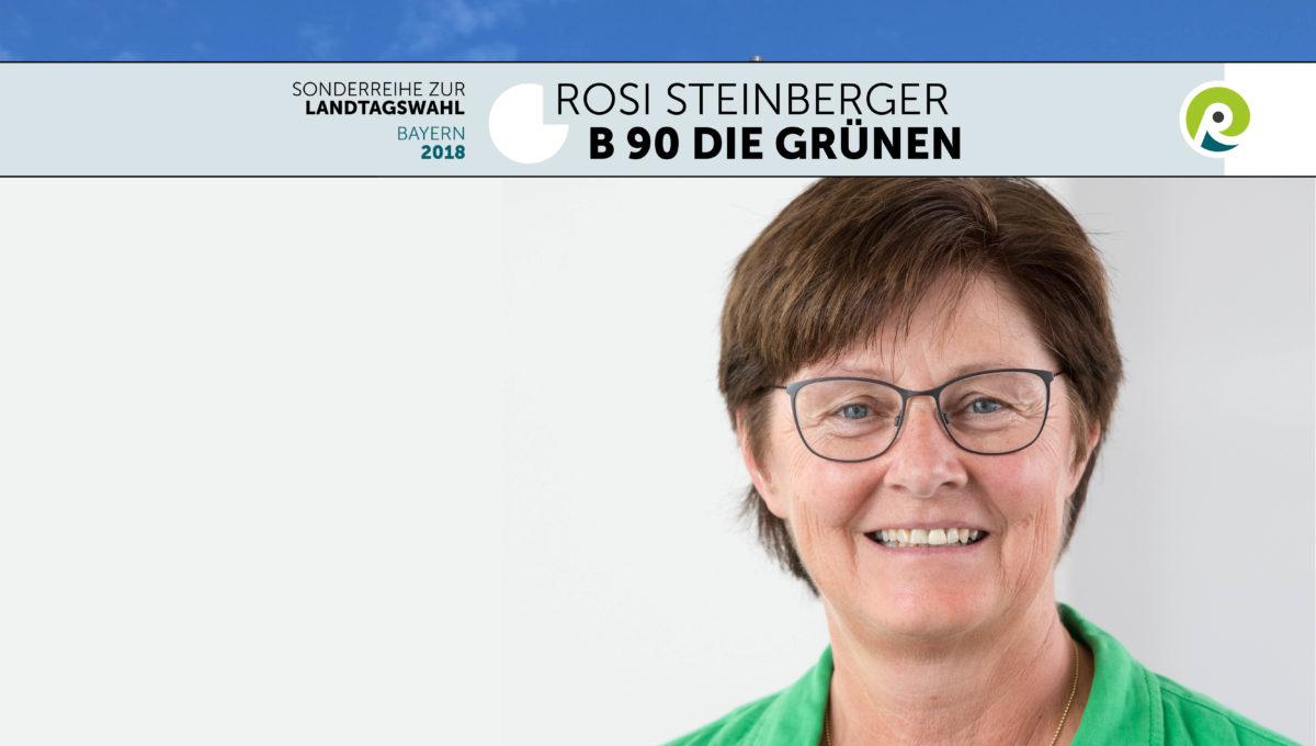 Landtagswahl-Gruene-c-regiothek