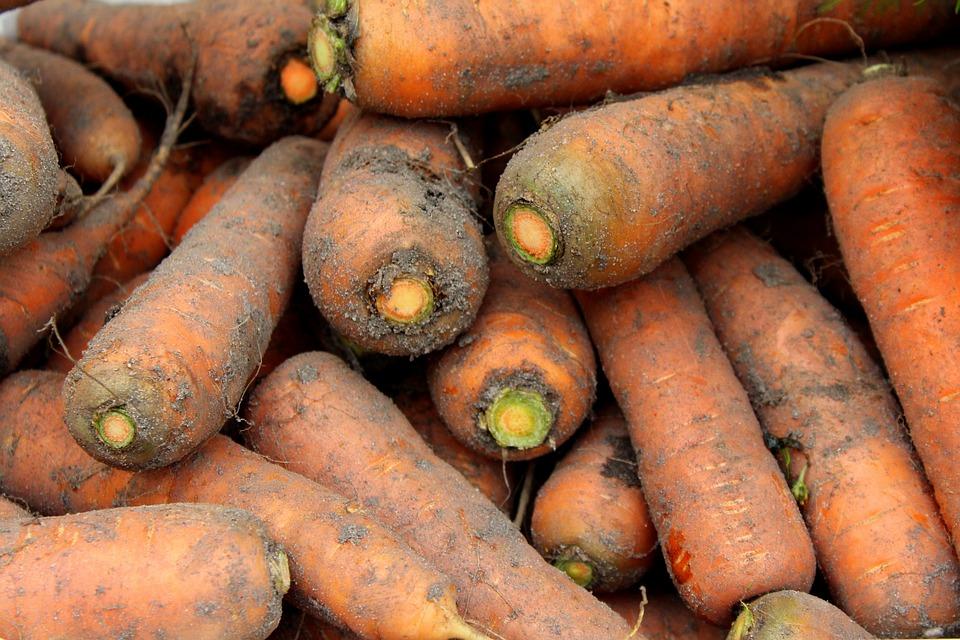 Das Schmankerl der Woche: Karotte