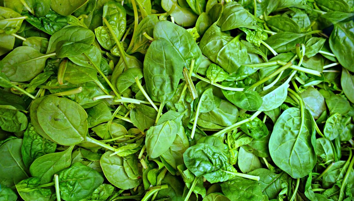 Das Schmankerl der Woche: Spinat