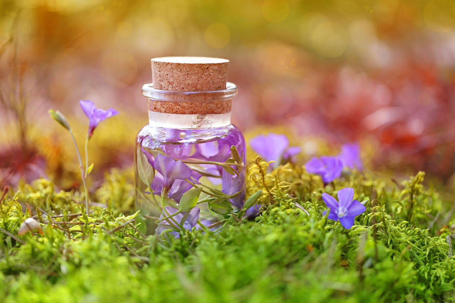Nahaufnahme eines Gläschens mit eingelegten Blüten, steht in einem Feld derselben Blüten.