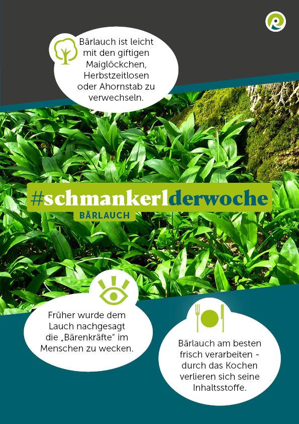 Die Regiothek-Infografik zum #SchmankerlderWoche: Bärlauch.