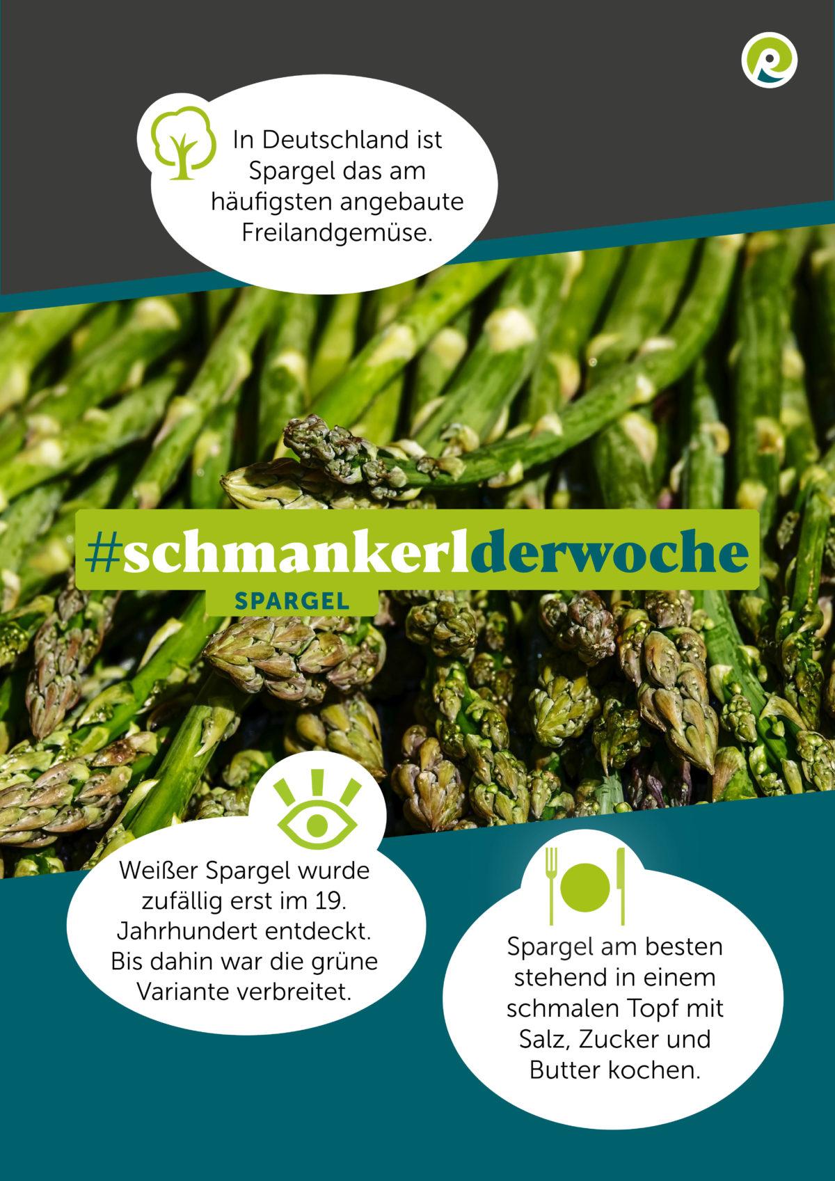 Regiothek-Infografik zum Schmankerl der Woche: Spargel.