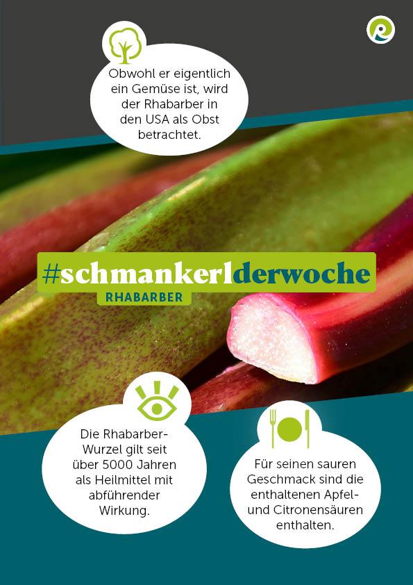 Die Regiothek-Infografik zum Schmankerl der Woche: Rhabarber.