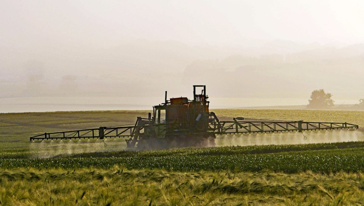 Österreich verbietet Glyphosat-Einsatz